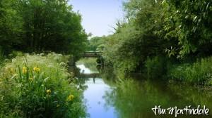 Rodd's Bridge over Bude Canal