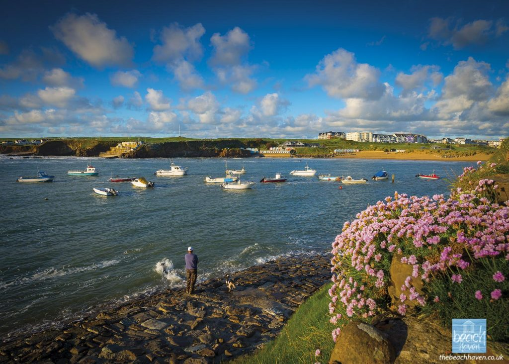 Springtime at Bude harbour