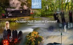 October Half Term in Cornwall